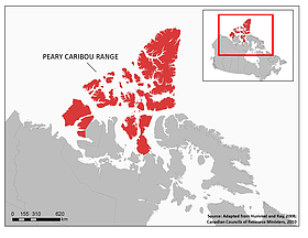 Peary caribou range  	© Hummel and Ray 2008 / Canadian Councils of Resource Ministers, 2010