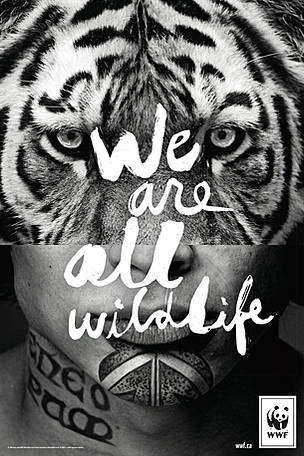 We Are All Wildlife Wwf Canada