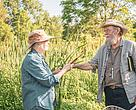 Aleta and Fred discuss cattail hybridization at Curry Park, Kemptville, Ontario